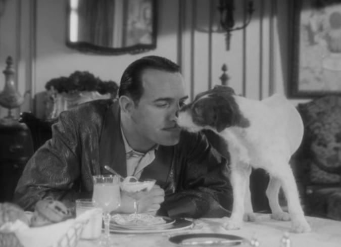 Top 10 Perros memorables en el cine