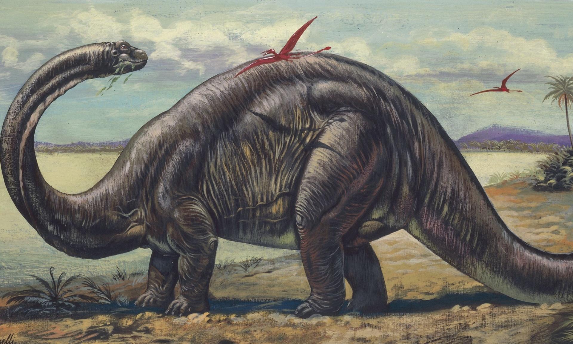 Бронтозавры в картинках