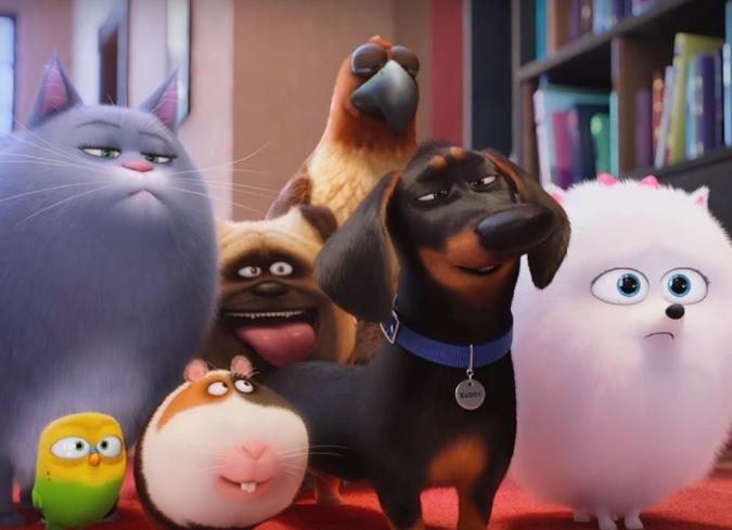 Película la vida secreta de tus mascotas enfilme